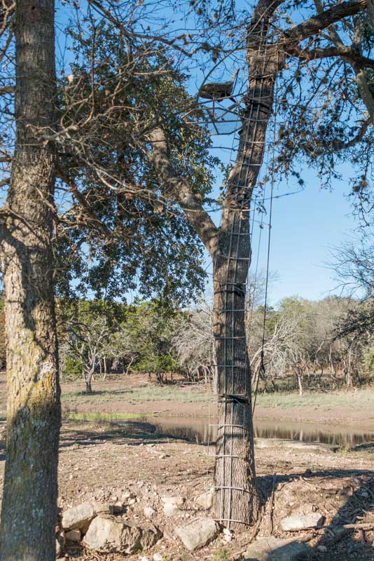 Hunting Blinds At Buck Valley Ranch